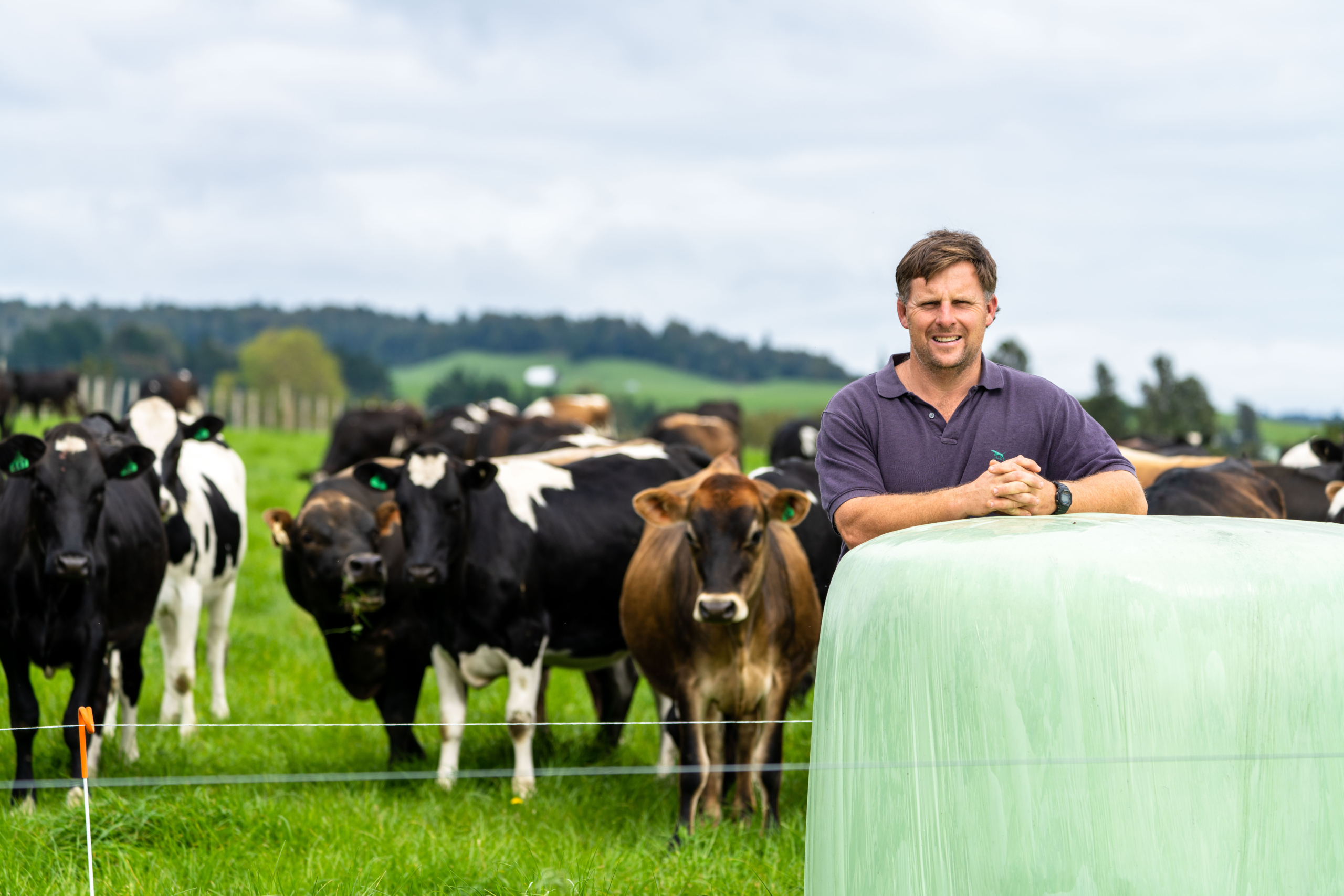 Phil and Megan Weir have designed a system to increase dairy grazing income by adding value