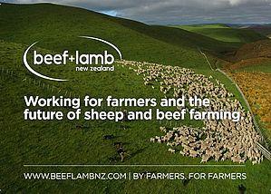 Beef+Lamb NZ